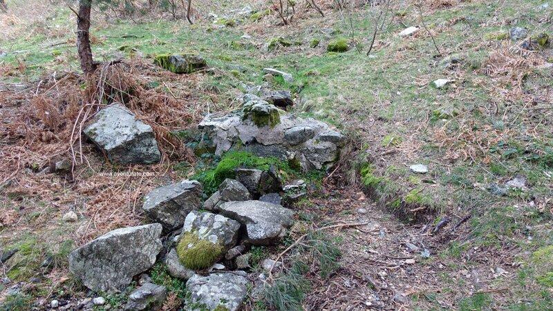 Fuente Arroyo de la Fuenfría
