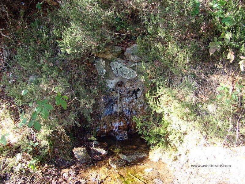 Fuente Tres Ignacio